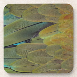 Feather surface coaster