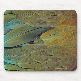 Feather surface mouse mat