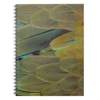 Feather surface spiral notebook