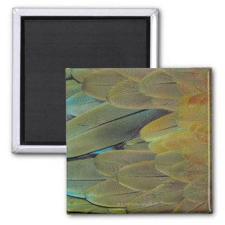 Feather surface square magnet