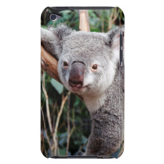 Featherdale Wildlife Park, Koala Bears Barely There iPod Cover