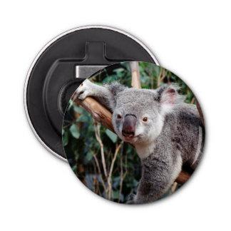 Featherdale Wildlife Park, Koala Bears Bottle Opener