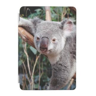 Featherdale Wildlife Park, Koala Bears iPad Mini Cover
