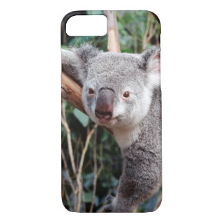 Featherdale Wildlife Park, Koala Bears iPhone 8/7 Case