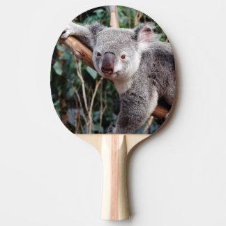 Featherdale Wildlife Park, Koala Bears Ping Pong Paddle
