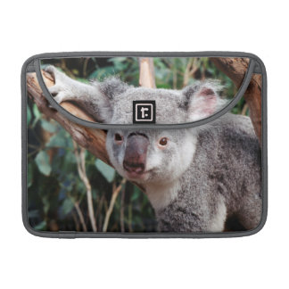 Featherdale Wildlife Park, Koala Bears Sleeves For MacBooks