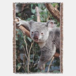 Featherdale Wildlife Park, Koala Bears Throw Blanket