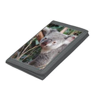 Featherdale Wildlife Park, Koala Bears Tri-fold Wallet