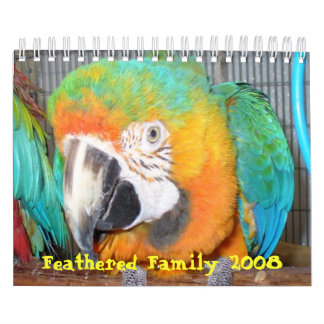 Feathered Family 2008 Calendar, Small Wall Calendars