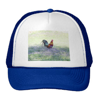Feathered Pride hat / cap