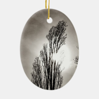 Feathered Trio Christmas Ornament