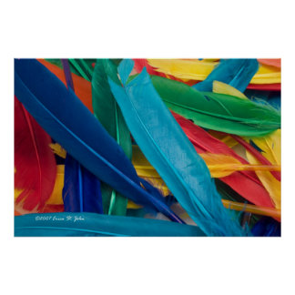 Featherly Poster