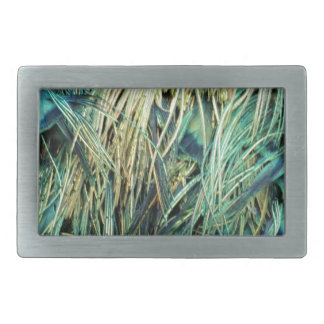 Feathers Of A Peacock Cool Colors Rectangular Belt Buckles