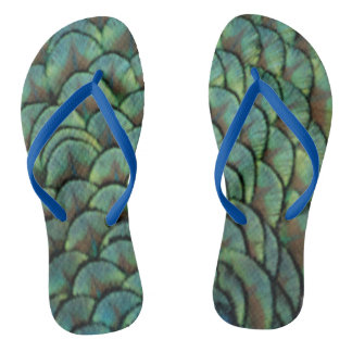 feathers of a peacock flip flops