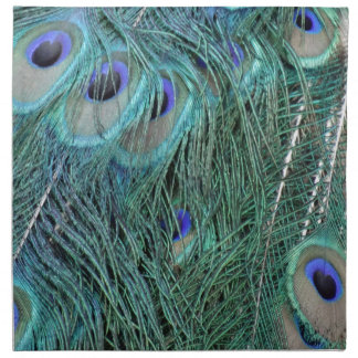 Feathers Of A wild Peacock Napkin