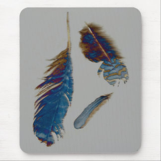 Feathers on a windy day.... mouse mat