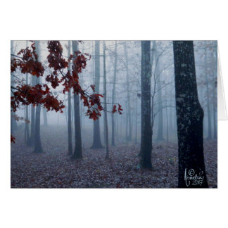 February Fog Blank Greeting Card