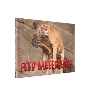 Feed Me Lion Canvas Print