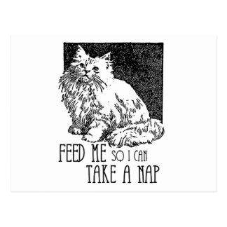 Feed me so I can take a nap Post Card
