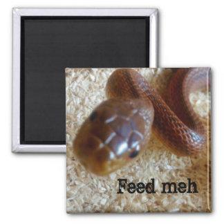 Feed Meh Snake Magnet