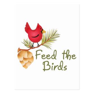 Feed The Birds Postcard