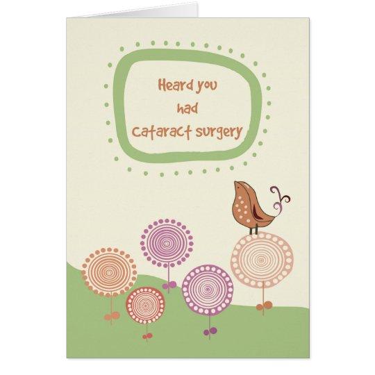 Feel Better, Get Well after Cataract Surgery, Bird