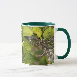 Feel fresh with nature mug