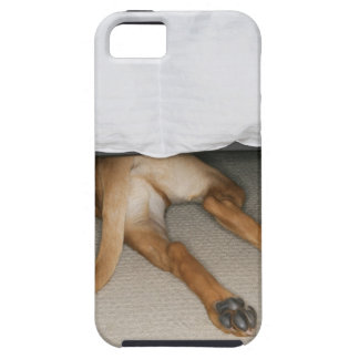 Feet and tail of yellow lab dog hidden under bed tough iPhone 5 case