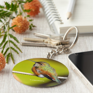 Feisty Little Girl: Rufous Hummingbird Basic Round Button Key Ring