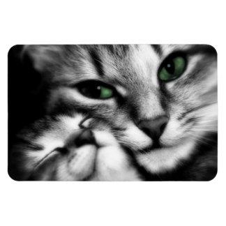 Feline Affection Rectangular Photo Magnet