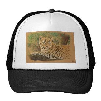 Feline Beauty Cap