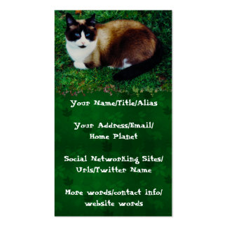 Feline Beauty Pack Of Standard Business Cards