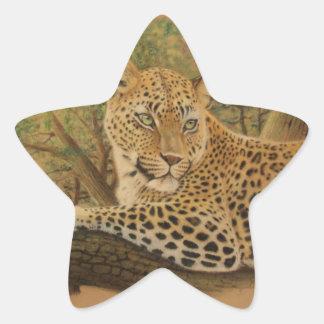 Feline Beauty Star Sticker