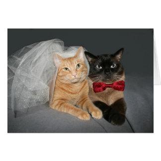 Feline Bride and Groom Greeting Card