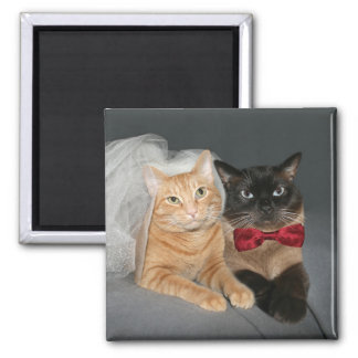 Feline bride and groom square magnet