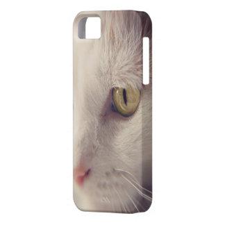 Feline Cat Cases. iPhone 5 Cases
