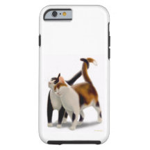 Feline Friends Cat iPhone 6 Tough Case Tough iPhone 6 Case