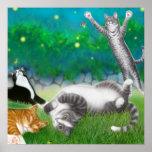 Feline Fun with Fireflies Poster