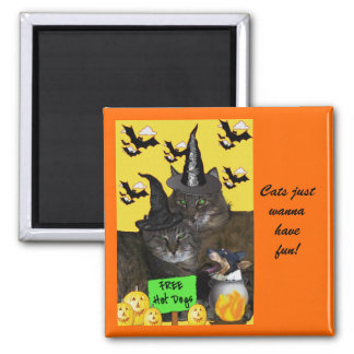 Feline Halloween Party Magnet