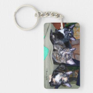 Feline Siblings Single-Sided Rectangular Acrylic Key Ring