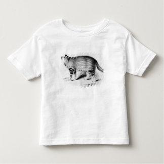 Felis Pajeros, plate 9 Toddler T-Shirt