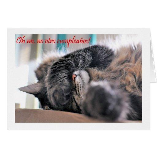 Feliz Cumpleaños Spanish Birthday with kitty cat Greeting Cards