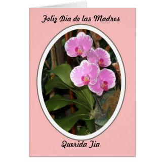Feliz Dia de las Madres Querida Tia Greeting Card