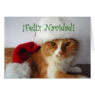 Feliz Navidad - Cat Wearing Santa Hat Card