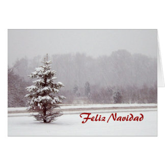 Feliz Navidad Merry Christmas in Spanish and snow Card