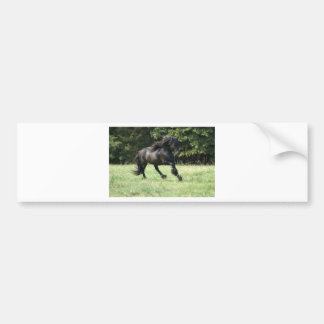 Fell Pony Stallion Bumper Sticker