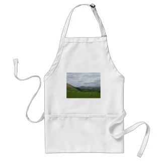 fell view phone cover standard apron