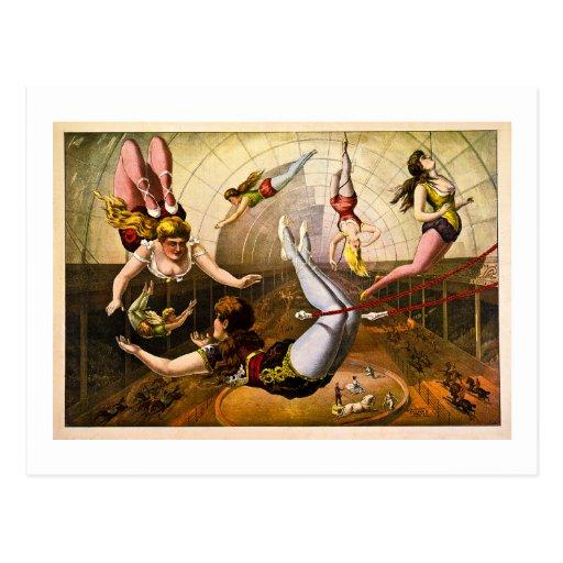 Female Acrobats 1890 Postcard
