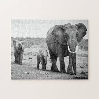 Female African elephant and three calves, Kenya. Jigsaw Puzzle