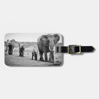 Female African elephant and three calves, Kenya. Luggage Tag